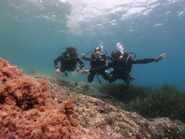 Centre de plongée 06230 club plongee mediterrannee