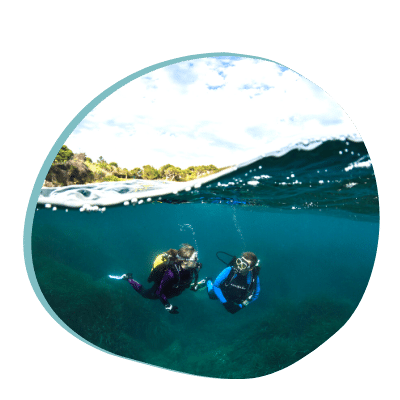 Centre de plongée 06230 centre plongee bapteme sud est