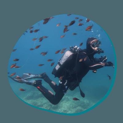 Centre de plongée 06230 decouverte mediterrannee plongee sous marine