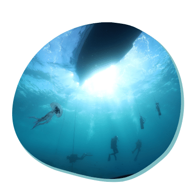 Centre de plongée 06230 exploration sous marine padi