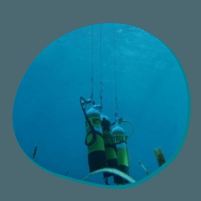 Centre de plongée 06230 plongee nitrox monaco nice
